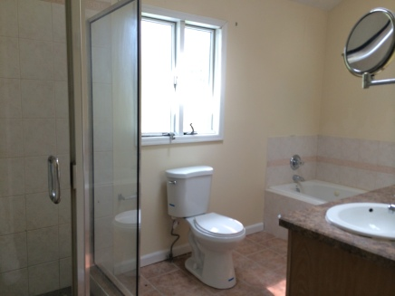 Main Bath with tub and stand up shower on second level
